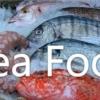 Nama Ikan dan Sea Food dalam Bahasa Jepang