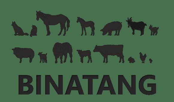 Nama Binatang Dan Hewan Dalam Bahasa Jepang Belajar Bahasa Jepang Online Wkwkjapan